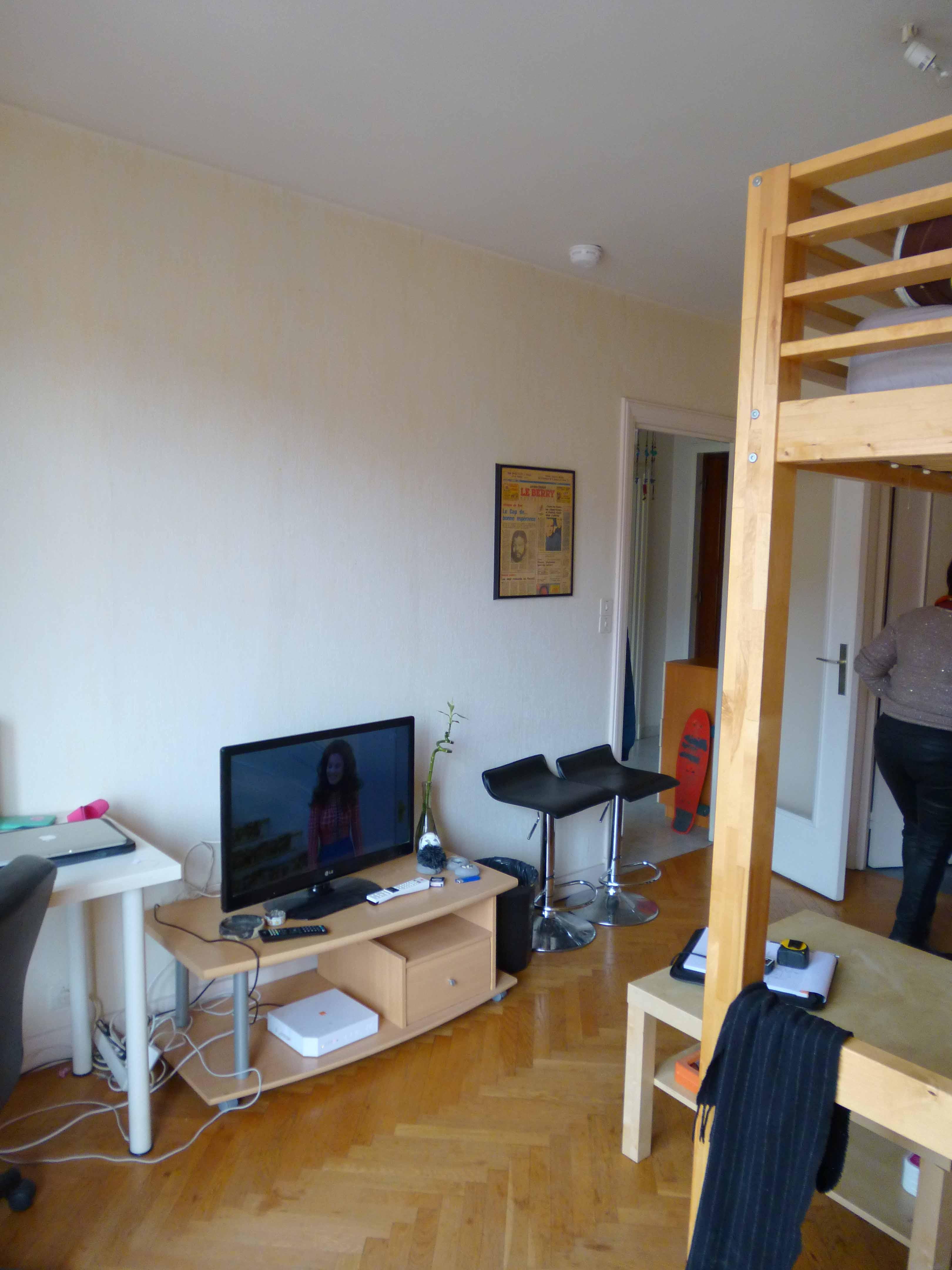 r novation appartement lyon 2 batiart cr ation. Black Bedroom Furniture Sets. Home Design Ideas